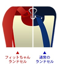2015fit-belt